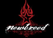 Band logo for 'Newbreed'. Medium: Digital. By Craig Mackay.